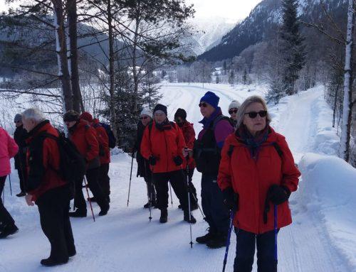 Ettal 2019 – ein Wintermärchen